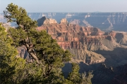 Bright Angel area, Grand Canyon, North Rim