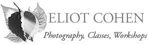 Eliot Cohen's photography, photo workshops, and classes